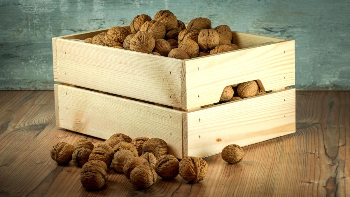 walnutbox